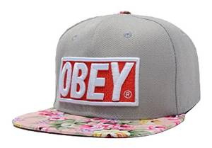 ultimate snapback hat 2015